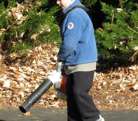 child blowing leaves